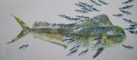 Daurade coryphène, sardines 114X50